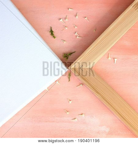 White canvas on the stretcher and the angle of the wooden stretcher. Pastel background in pink colours.