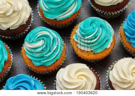 Cupcakes with turquoise and white buttercream frosting dessert on brown background