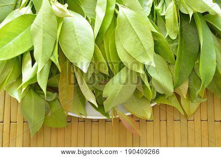 Garcinia cowa tropical herb taste sour but healthy food on tray