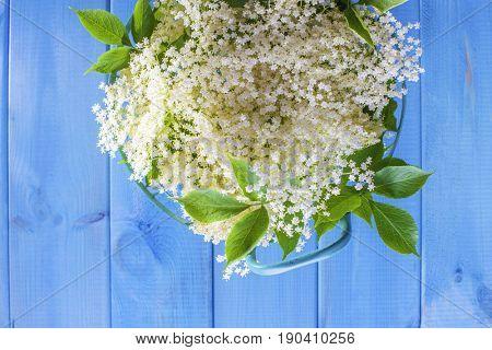 basket full of elderflower - alternative medicine