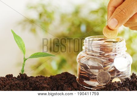 hand put coins on plastic jars and staced money with small green tree growth up from soil concept in save and growth up step by step of business finance economy and account bank