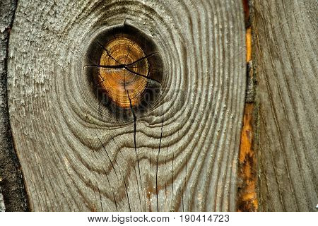 wood texture old yellow knot on dry hard cracked wooden board or plank surface unpainted panel of natural color as timber background. Stability shelter strength. Carpentry