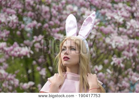 woman or cute girl fashionable model stylish makeup with bunny ears on blond long hair posing in pink top at blossoming trees in park on blurred floral environment. Spring. Easter