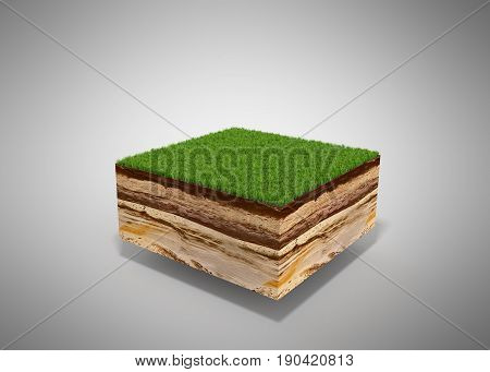 3D Illustration Of Cross Section Of Ground With Grass Isolated On Grey