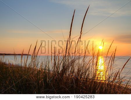 Summer Beach Sunset Horizon. Sunset reflected in the water of Lake Huron with dune grass in the foreground. Port Austin, Michigan