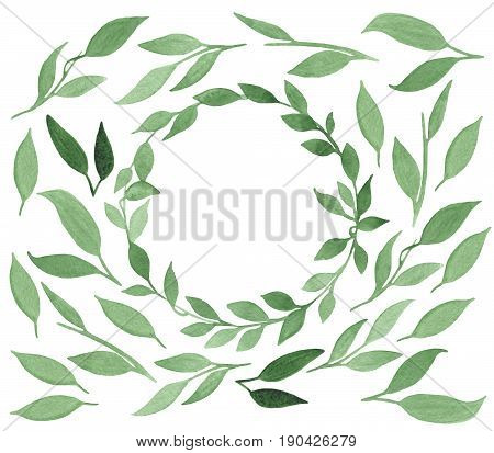 Set of hand-drawn watercolor green leaves isolated on white background. Floral illustration made for design, textile and background