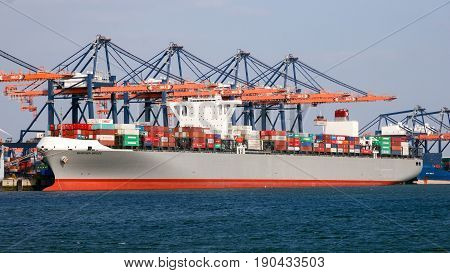 Container Ship Port Shipping Terminal