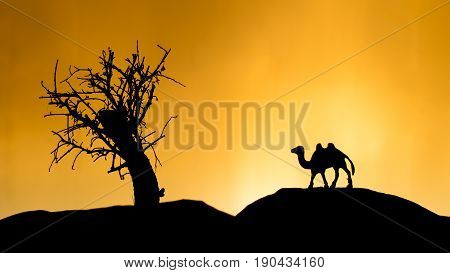 Safari in Africa orange sunset tree with toy camel