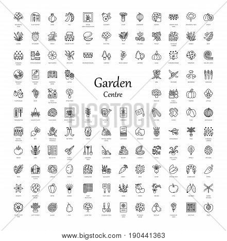 Vector line icons with vegetables garden tools trees shrubs and house plants. Garden centre elements. Different styles of indoor and outdoor plants. Roses seeds berries grasses herbs lawn rockery conifer fruit trees.