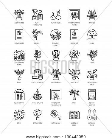 Vector line icons with house plants and flowers. Indoor flowering and green foliage plants. Gardening tools and accessories. Lucky bamboo bonsai fern cactus succulent orchid palm. Elements for interior decoration.