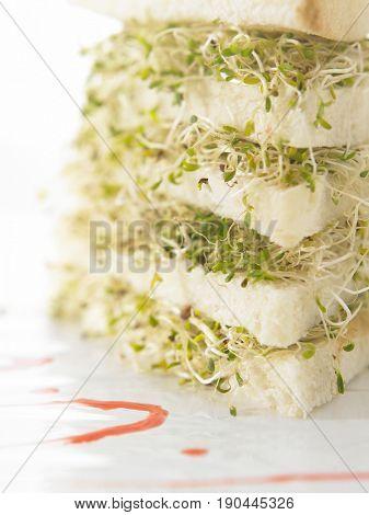 layers of alfalfa sandwich