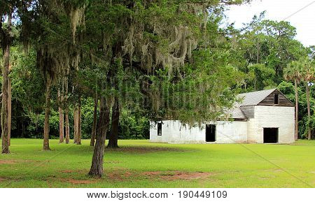 Kingsley Plantation in Jacksonville, Florida. Trees and slave cabin ruins.