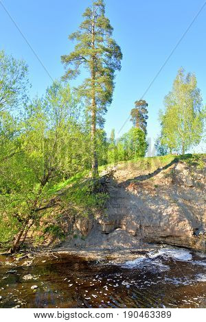View of the river Sablinka at sunny summer day Leningrad Region Russia.