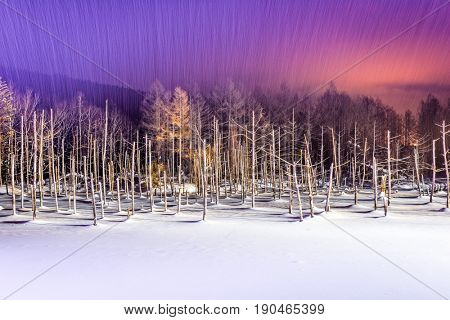 Biei, Japan at Aoike Blue Pond in winter.