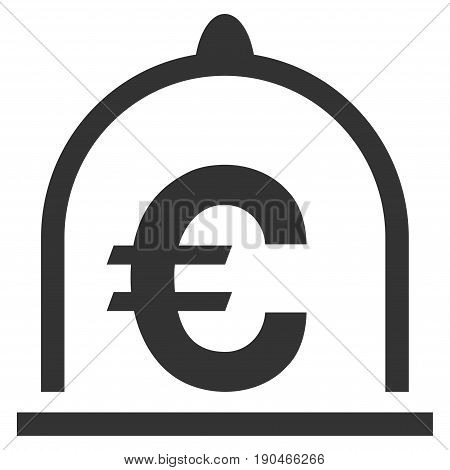 Euro Standard vector icon. Flat gray symbol. Pictogram is isolated on a white background. Designed for web and software interfaces.