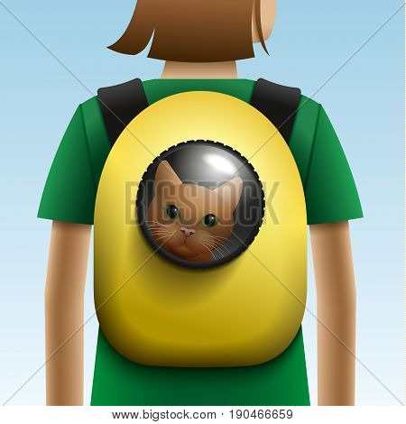 Cat in the backpack with porthole. Vector illustration