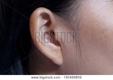 Human ear closeup. woman ear and hair