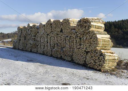 Woodpiles in Winter. Outdoor shot in Hessen Germany