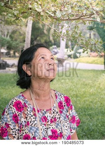 Close Up Senior Thai Woman Portrait Look Up To Twig