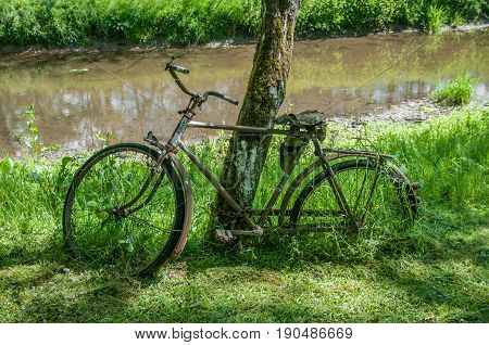Old rusty bicycle with flowers in basket on old wall background