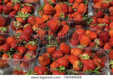 Copenhagen /Denmark - 08 June 2017. Strawberry containers . (Photo.Francis Joseph Dean/Deanpictures)