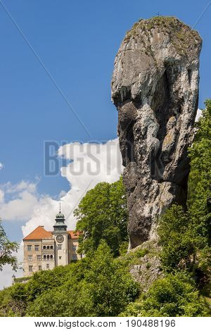 Rock called Maczuga Herkulesa in National Ojcow Park Poland