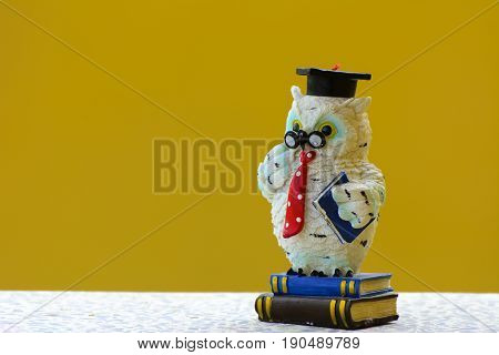 Earthenware figurines decorative figurines owl isolated on a yellow background