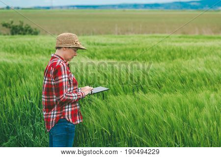 Farmer using digital tablet in wheat crop field concept of responsible modern smart farming by using electronics