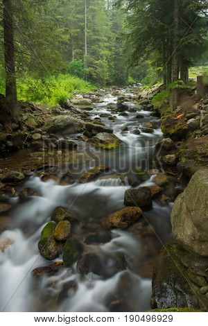 Water stream in the mountains in France