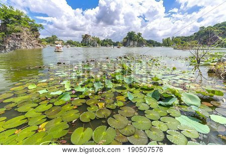 Landscape ecotourism with a large lotus pond lake attract tourists to resorts on weekends