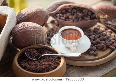 Fresh Chocolate And.liquid Chocolate In White Ceramic Glass.on Cocoa Beans Background.