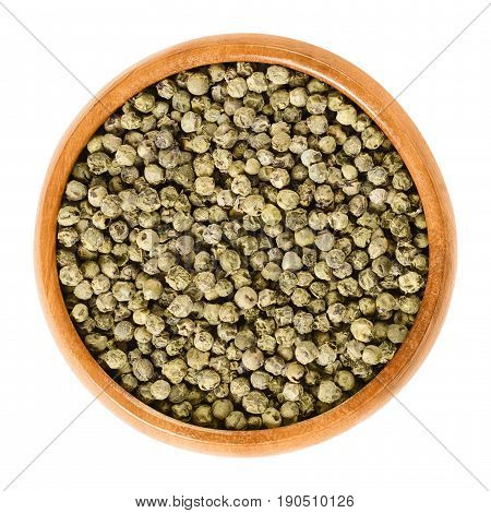 Green pepper in wooden bowl. Dried berries of Piper nigrum are called peppercorns. Made from the unripe drupes of the pepper plant. Spice and seasoning. Isolated macro food photo close up over white.