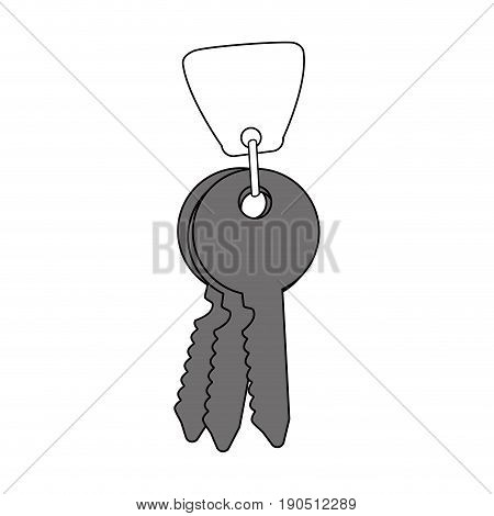 Flat line keys and keychain over white background vector illustration