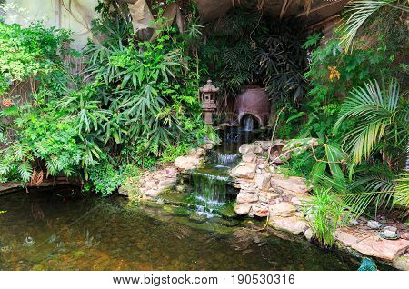 Small waterfall in decorative pond with gold fishes