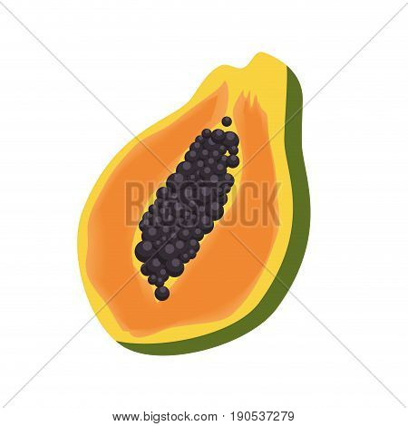 paw paw fruit icon over white background colorful design vector illustration