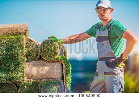 Natural Grass Turfs Installer. Caucasian Gardening Industry Worker. Installation of Brand New Grass.