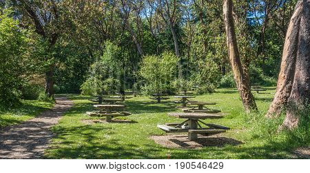 A view of picnic table at Lincoln Park in West Seattle Washington.