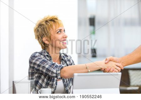 Smiling Young Businesswoman Shaking Hands