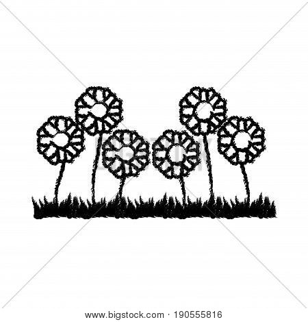 monochrome blurred silhouette of sown of abstract sunflowers vector illustration