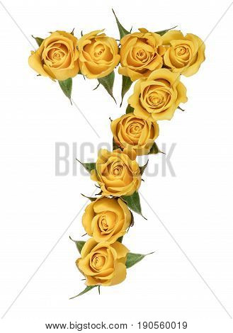 Arabic Numeral 7, Seven, From Yellow Flowers Of Rose, Isolated On White Background
