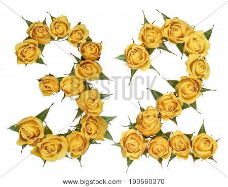Arabic Numeral 32, Thirty Two, From Yellow Flowers Of Rose, Isolated On White Background