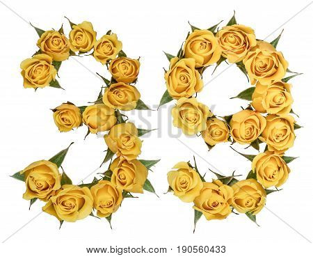 Arabic Numeral 39, Thirty Nine, From Yellow Flowers Of Rose, Isolated On White Background