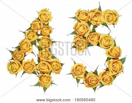 Arabic Numeral 45, Forty Five, From Yellow Flowers Of Rose, Isolated On White Background