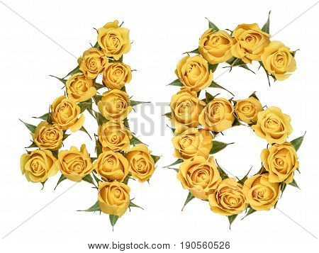 Arabic Numeral 46, Forty Six, From Yellow Flowers Of Rose, Isolated On White Background