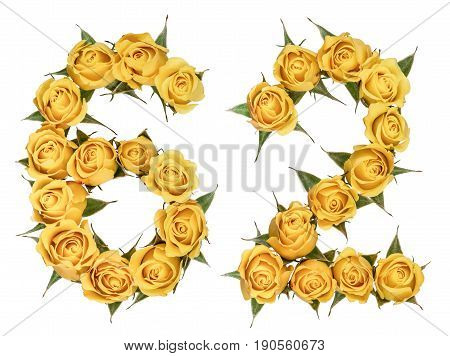 Arabic Numeral 62, Sixty Two, From Yellow Flowers Of Rose, Isolated On White Background