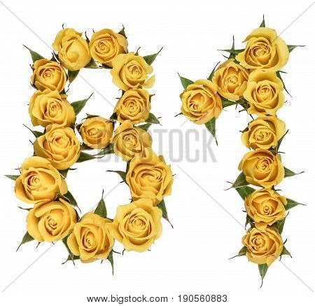 Arabic Numeral 81, Eighty One, From Yellow Flowers Of Rose, Isolated On White Background