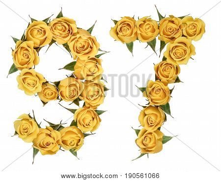 Arabic Numeral 97, Ninety Seven, From Yellow Flowers Of Rose, Isolated On White Background