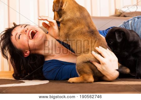young woman playing with puppies in her home