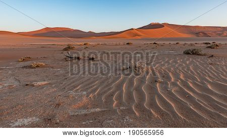 Sunrise in the dunes at Sossusvlei part of the Namib Naukluft Park in Namibia