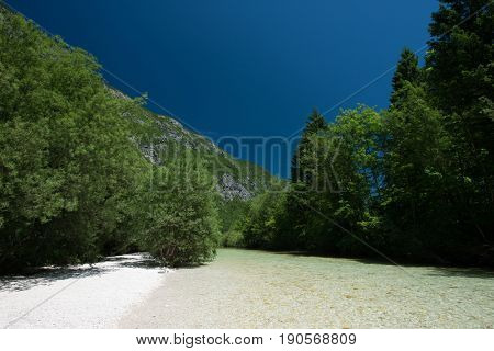 Crystal clear mountain river cross the forest